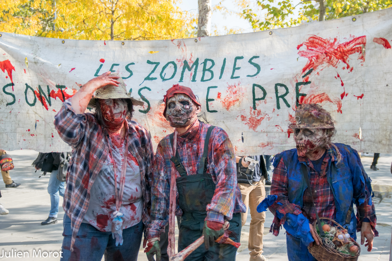 Zombie Walk 2015